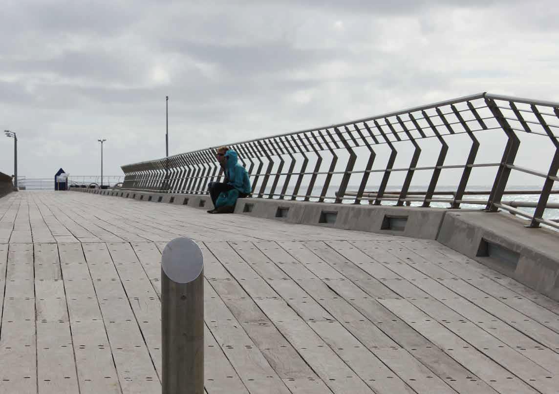 Lorne Pier – Point Grey